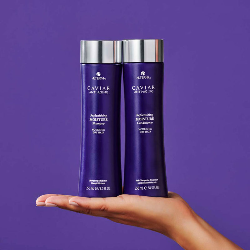 Alterna haircare northland hair company kerikeri